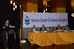 AmCham-Lunch-Meeting-May-02-2019-3-